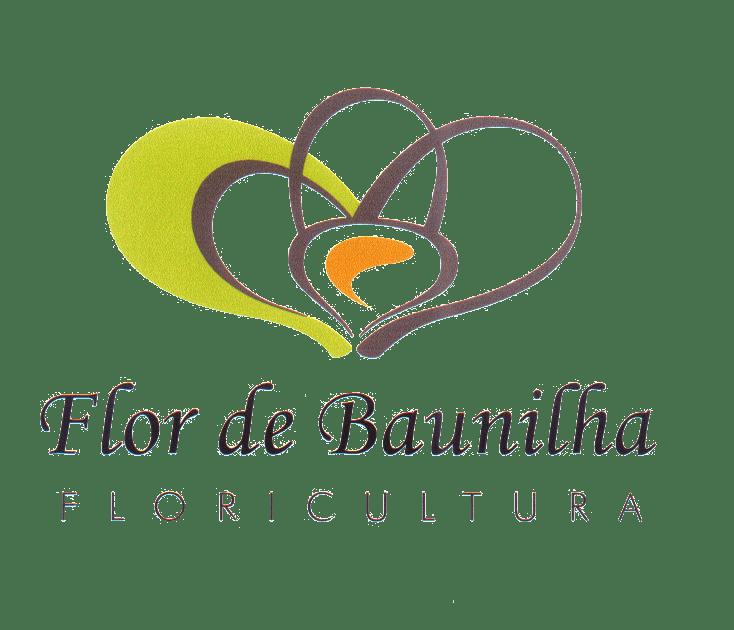 FLOR DE BAUNILHA